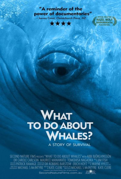 What-To-Do-About-Whales